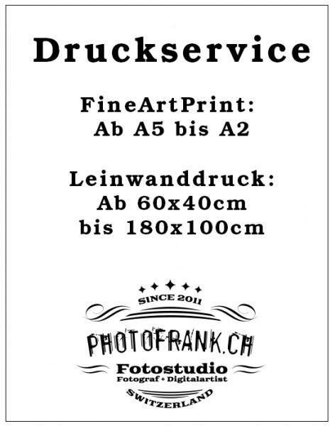 Druckservice Fineartprint & Leinwanddruck
