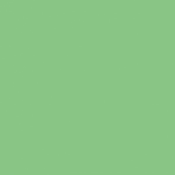 Colorama Summer Green Papier Hintergrund Rolle 11 x 1.35 m