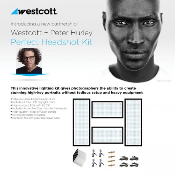Westcott Peter Hurley Flex™ 4-LED Kit-Copy