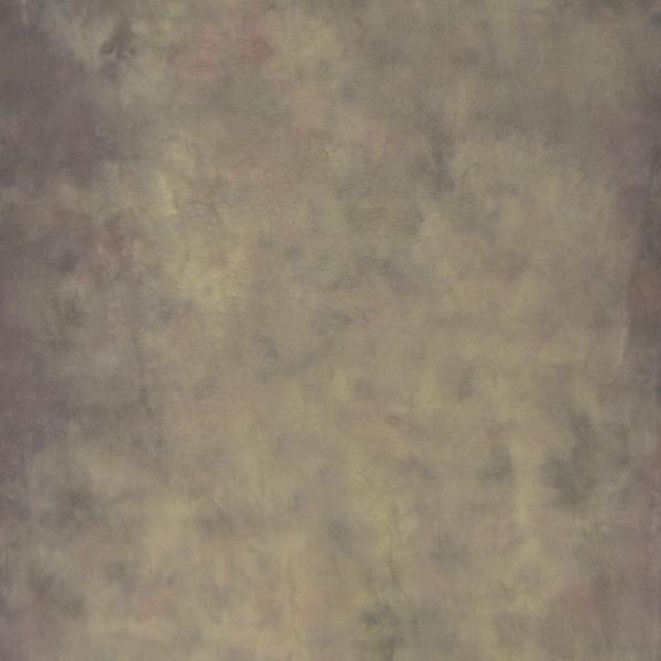 Savage Desert Canvas Hintergrund 1.52 x 2.13m