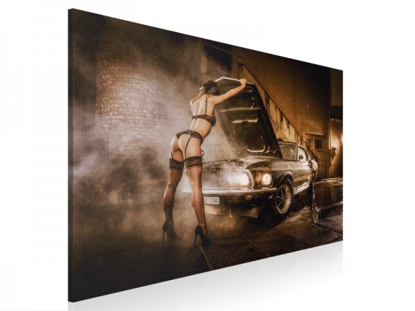 Leinwand - The Mustang Girl - Part III - 80x60cm